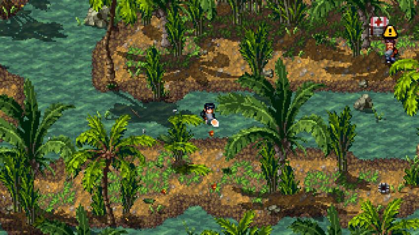 ShakedownHawaii giungla